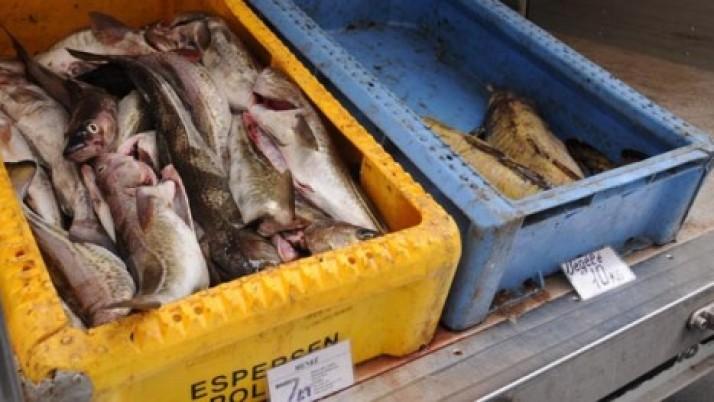 Siūloma įrengti plaukiojančią žuvies parduotuvę