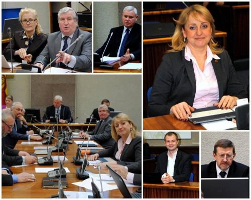 Liberalai vienijasi vardan Klaipėdos ir liberalaus rinkėjo
