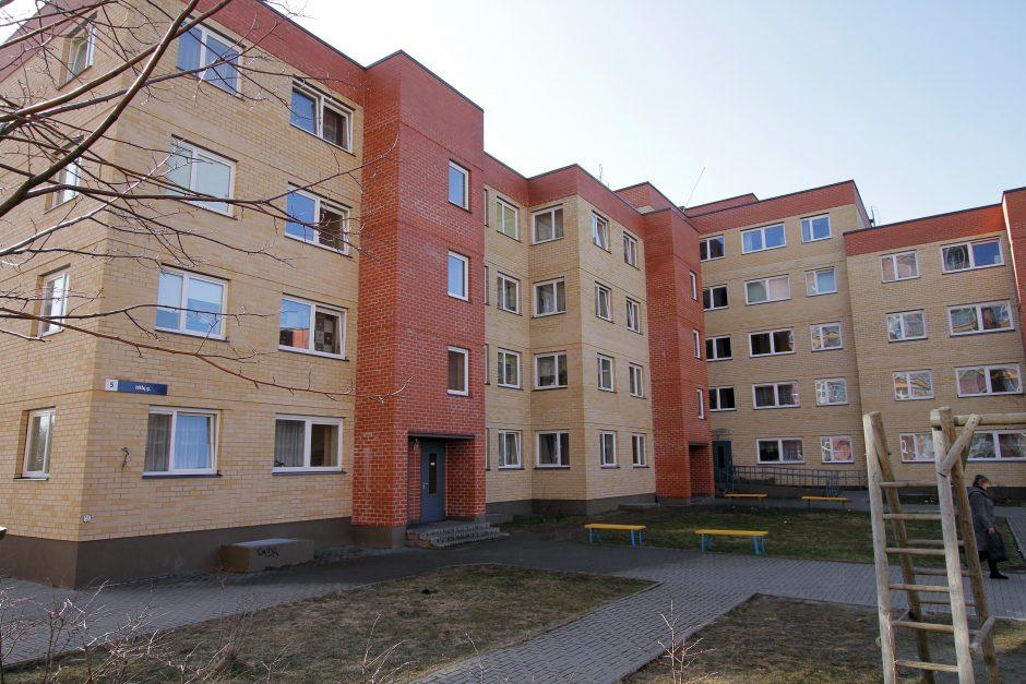 Uostamiestyje statys socialinius namus