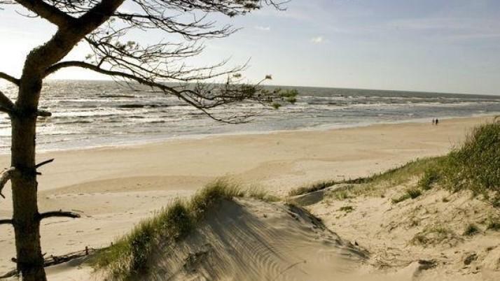 Aptars Smiltynės vystymo galimybes