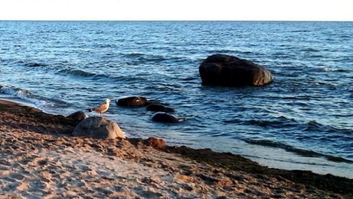 Grožėtis jūra – nuo apžvalgos tako